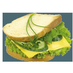 تست سبزیجات
