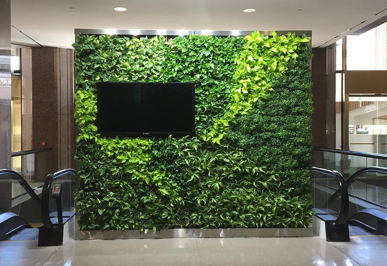 دیوارهای سبز، دیوارهای اکسیژن ساز شهری